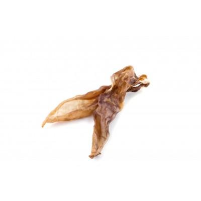 Ucho królicze 10 szt. MACED