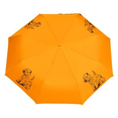 Parasol Shih Tzu szkic