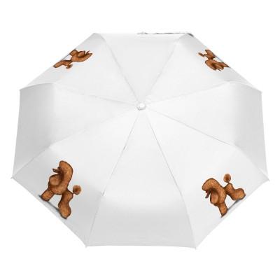 Parasol Pudel morelowy